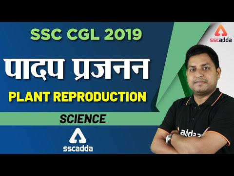 SSC CGL 2019 | Science | Plant Reproduction