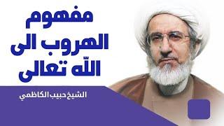 مفهوم الهروب الى الله تعالى - الشيخ حبيب الكاظمي