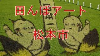 松本市でのたんぼアートは勘九郎と二人の子どもが、 地元の人たちと一緒...