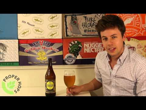 Positive Contact (Dogfish Head Craft Brewery) | Proper Hops #242