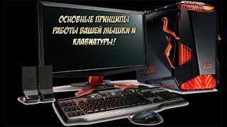 Основные принципы работы вашей мышки и клавиатуры  Обучение компьютеру