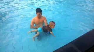 Thiên Minh Cá Vàng Bơi Nhạc Thiếu Nhi Hay