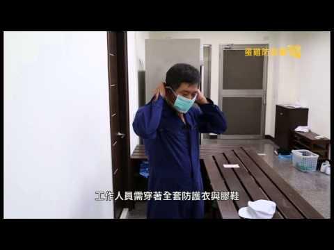 人車勤管制 防疫有保障(蛋雞篇)