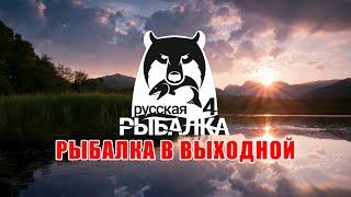 Рыбалка в выходной ∘ Турнир для новичков ∘ Русская Рыбалка 4