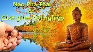 Nạo Phá Thai Và Nhân Quả Báo Ứng - Cách Siêu Thoát Cho Vong Linh Thai Nhi - Niệm Niệm