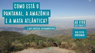 Como está o Pantanal, Amazônia e Mata Atlântica? e mais notícias socioambientais... - VERDE MAR #82