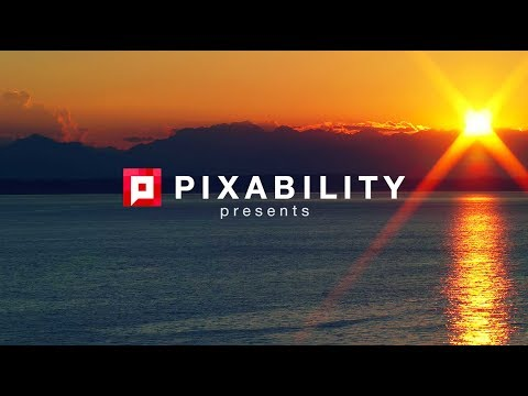 VR and 360° Video | Seattle Panel Highlights | Pixability