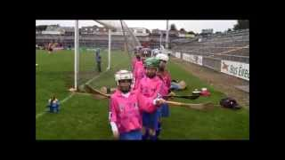 Camogie is