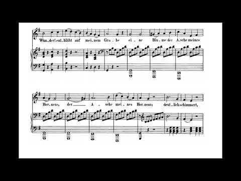Adelaide (L. van Beethoven) Score Animation