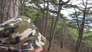 Крым,горы,природа 5