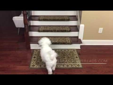 Non Slip Bullnose Carpet Stair Treads