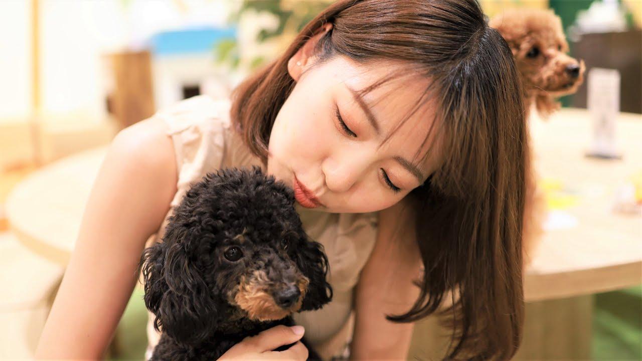 【彼女とデート前編】現役レースクイーン‼佐々木萌香と子犬カフェ&パイ食べデート