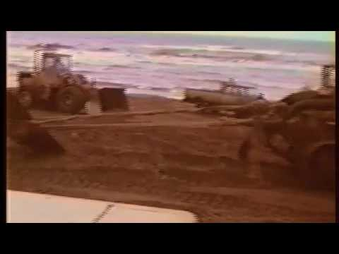 Blue Whale Burial in PEI in 1987