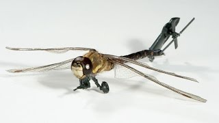 6 insect drones that could soon cause a buzz