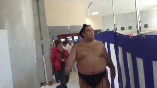 沖縄県立武道館で開催された大相撲沖縄場所の様子です、小結栃ノ心が歩...