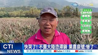 【整點精華】20210227 蟲蟲危機?陸抵制台鳳梨 農委會砸10億搶救市場
