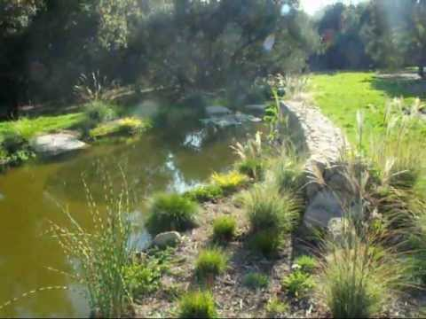 How To Build A Natural Looking Pond Youtube