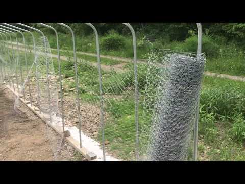 TIPS And TRICKS To Installing Chicken Wire