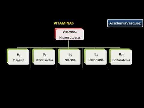 Vitaminas: Historia, Estructura