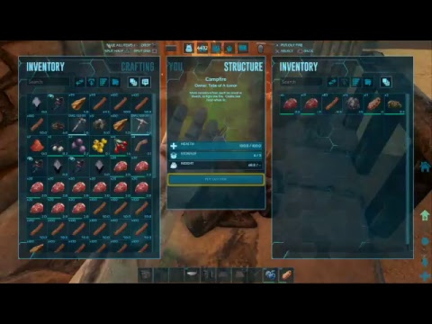 Ark Survival Evolved (Learning to play)