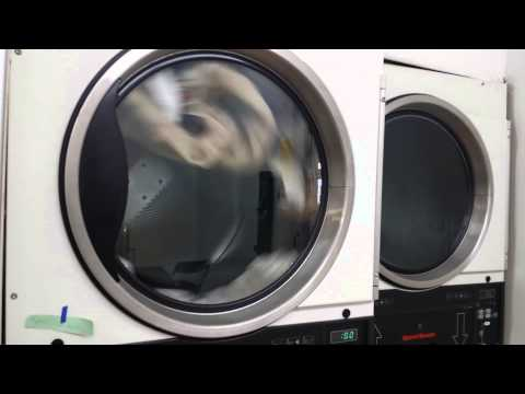 Clean all laundromat and dry cleaners