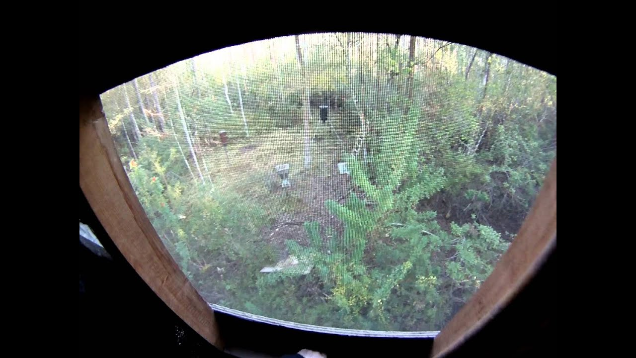 Up In The Ultimate Treestand A Luxury Treestand House