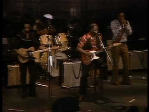 Muddy Waters - Baby Please Don