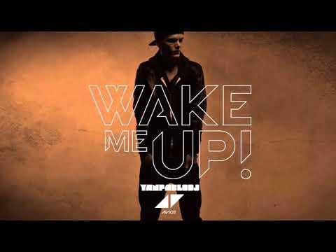Yan Pablo DJ e Avicii - Wake me up FUNK REMIX RIPAvicii