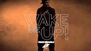 yan pablo dj e avicii wake me up funk remix ripavicii