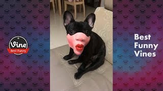 【Tik Tok / DouYin】Funny Videos 2018 P3  Chinese People doing stupid things , try not to laugh