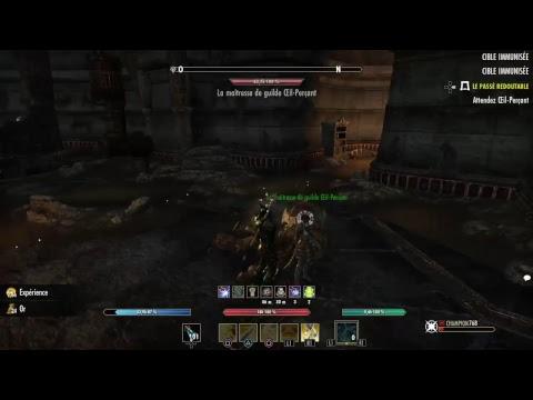 The Elder Scrolls Online by Draak LesDiablesNoirs
