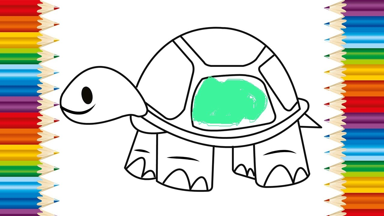 how to draw a turtle video
