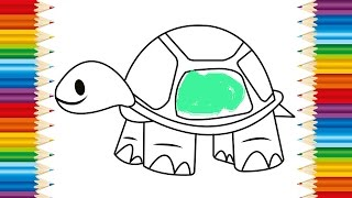 TURTLE Coloring page for KIDS and Learning How to Draw Turtle - Videos for children