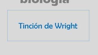 Tinción de Wright