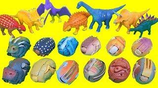 공룡알을 변신시키자. 공룡캡슐 에그 장난감 공룡메카드 더블피규어 세트  -브라키오사우루스 트리케라톱스 스테고사우루스
