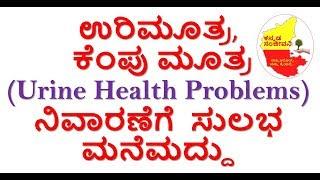 Home Remedies for Burning Urination Kannada   Urine Health Problems solution   Kannada Sanjeevani