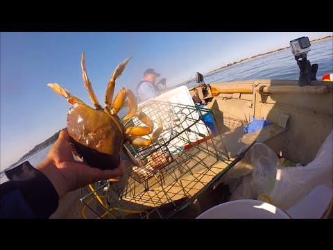 oregon coast crabbing