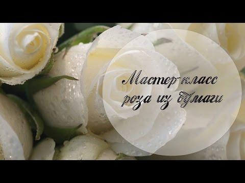 МК Гладиолус из конфет. DIY gladiolus of sweetsиз YouTube · С высокой четкостью · Длительность: 6 мин52 с  · Просмотры: более 46.000 · отправлено: 16.04.2014 · кем отправлено: Подарок Своими Руками