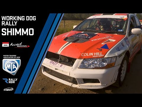Rally Action - Shimmo Stays On Top - Accent Benchtops Working Dog Rally