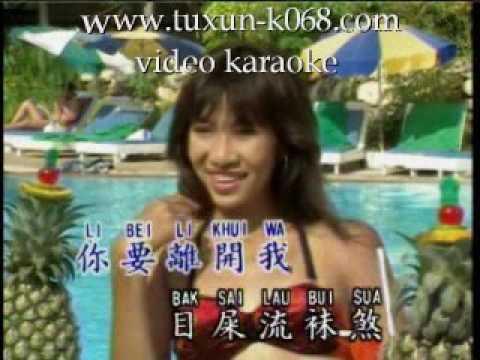 Long Si Wi Tio Li (Hokkian Karaoke Version)
