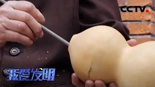 《我爱发明》 20200521 葫芦娃巧脱贫|CCTV农业