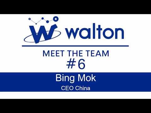 Meet the Team: Bing Mok (CEO of Waltonchain)