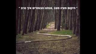 ציטוטים מאת בועז פמסון