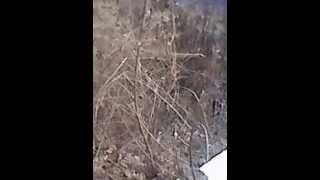 видео комплексный ремонт зданий