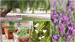 Property Tour (Garden Diary)