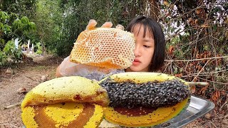 Lần Đầu Ăn Và Trải Nghiệm Ổ Ong Mật Siêu To