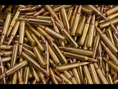 Dems Trying to BAN Online Ammo Sales