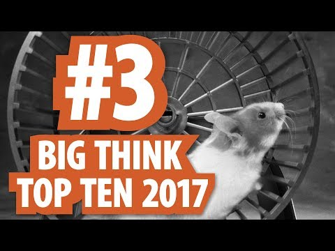 Big Think 2017 Top Ten: #3. Adam Alter on How Goal Setting is a Hamster Wheel. Set Systems Instead!