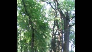 История о Знаменке и Знаменском районе(, 2012-04-06T17:08:12.000Z)