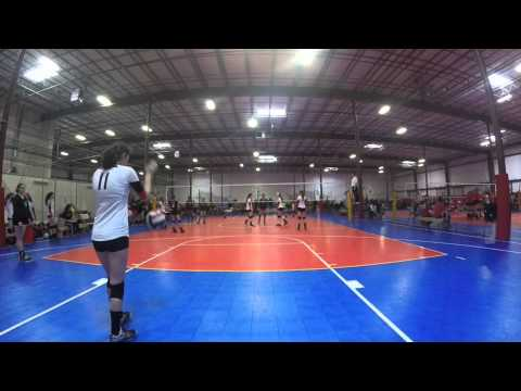 Bay Area Volleyball Academy  Tournament
